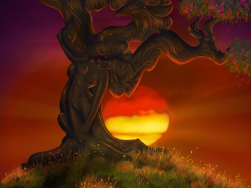 The Old Hanging Tree