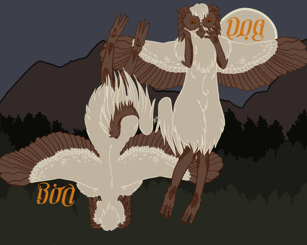 Bird Dog - Reference Sheet